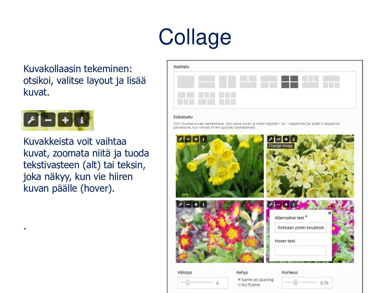 Agamotto (Image Blender) Kuva(sarja), jota voi ...