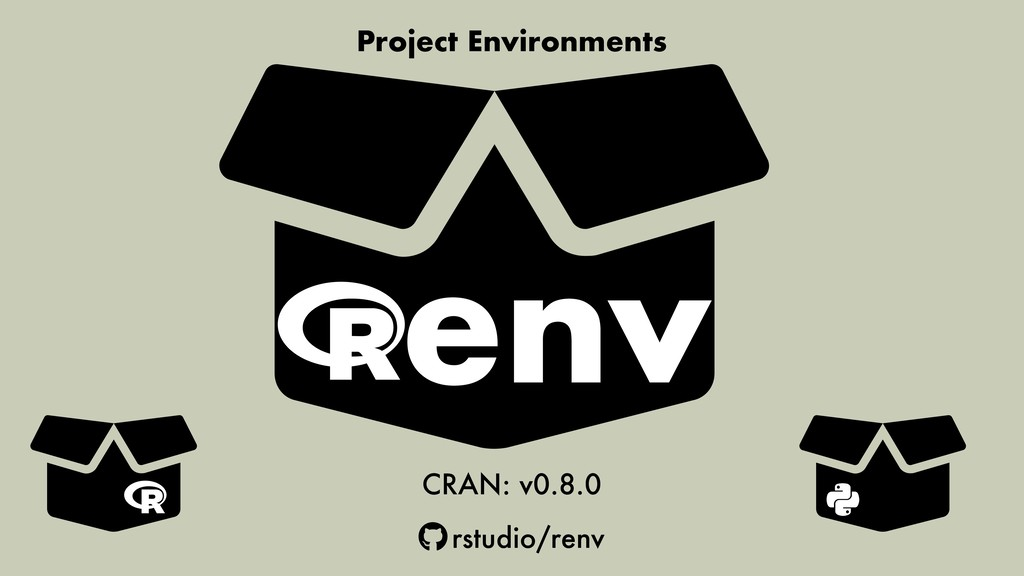 Project Environments CRAN: v0.8.0 rstudio/renv ...