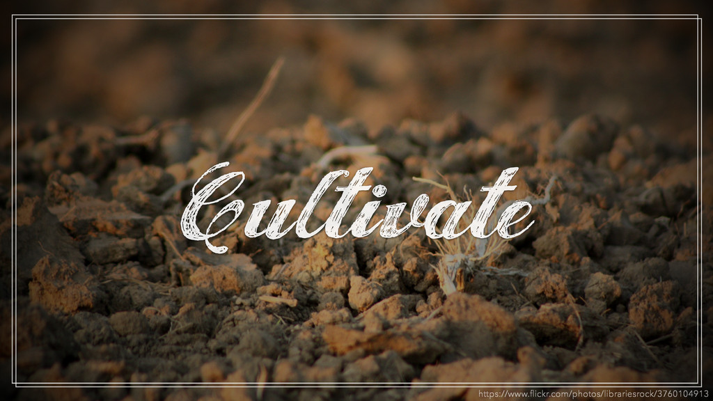 Cultivate https://www.flickr.com/photos/librarie...