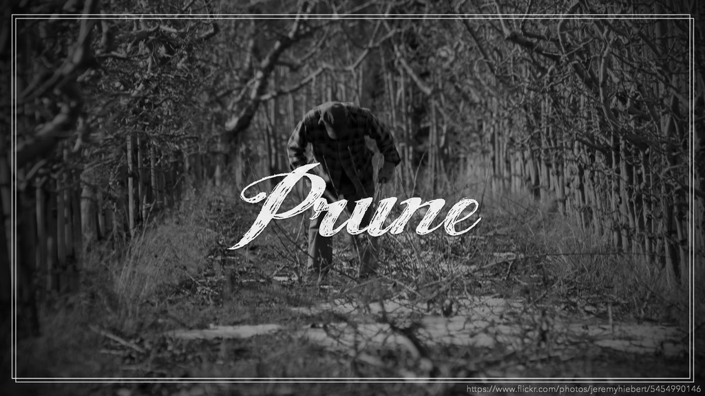 Prune https://www.flickr.com/photos/jeremyhieber...