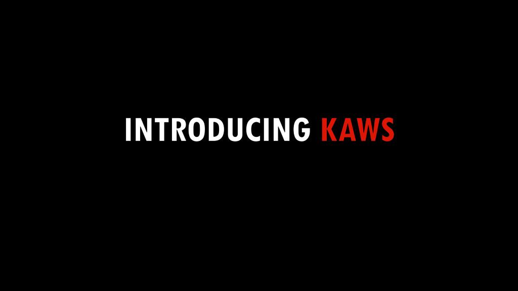 INTRODUCING KAWS