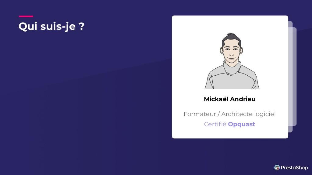 Qui suis-je ? Mickaël Andrieu Formateur / Archi...
