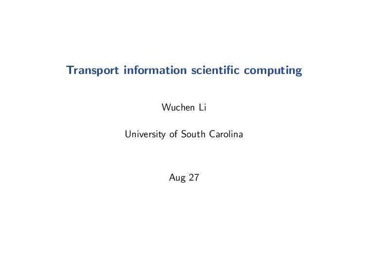 Transport information geometric computation: Ne...