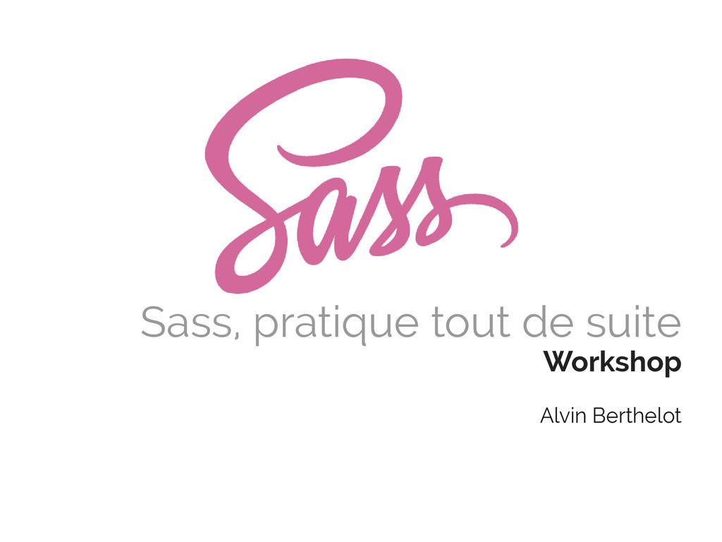 Sass, pratique tout de suite Workshop Alvin Ber...