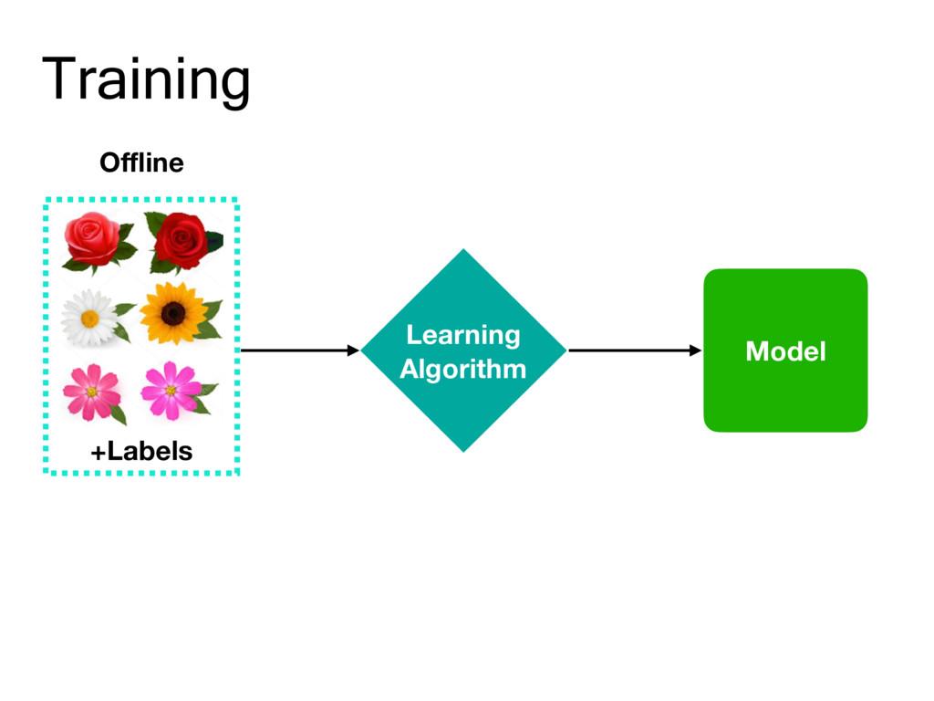 Training Offline +Labels Learning Algorithm Model