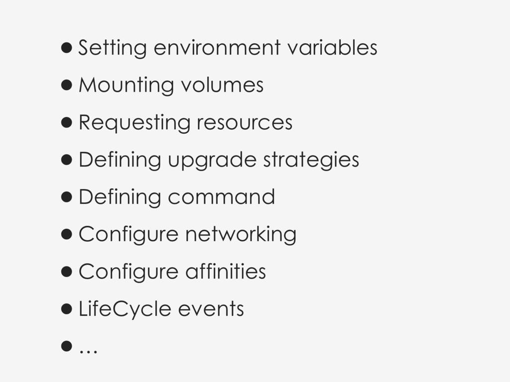 •Setting environment variables •Mounting volume...