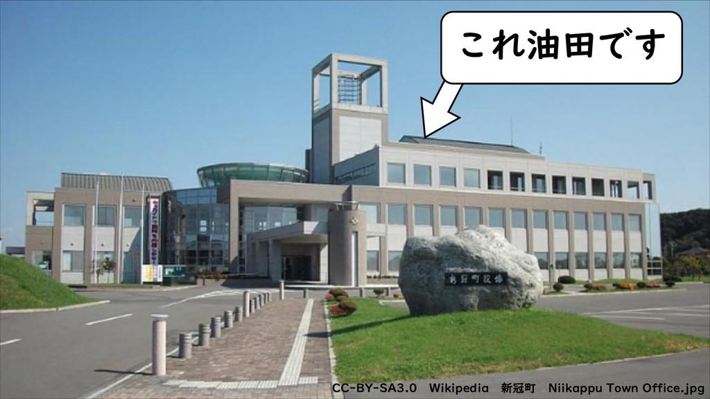 CC-BY 4.0 CC-BY 4.0 CC-BY-SA3.0 Wikipedia 新冠町 N...