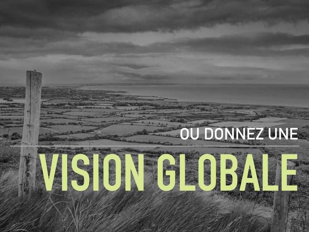 VISION GLOBALE OU DONNEZ UNE