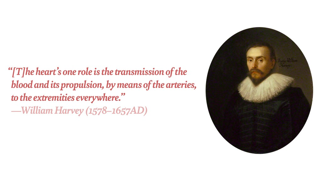 """""""[T]he heart's one role is the transmission of ..."""