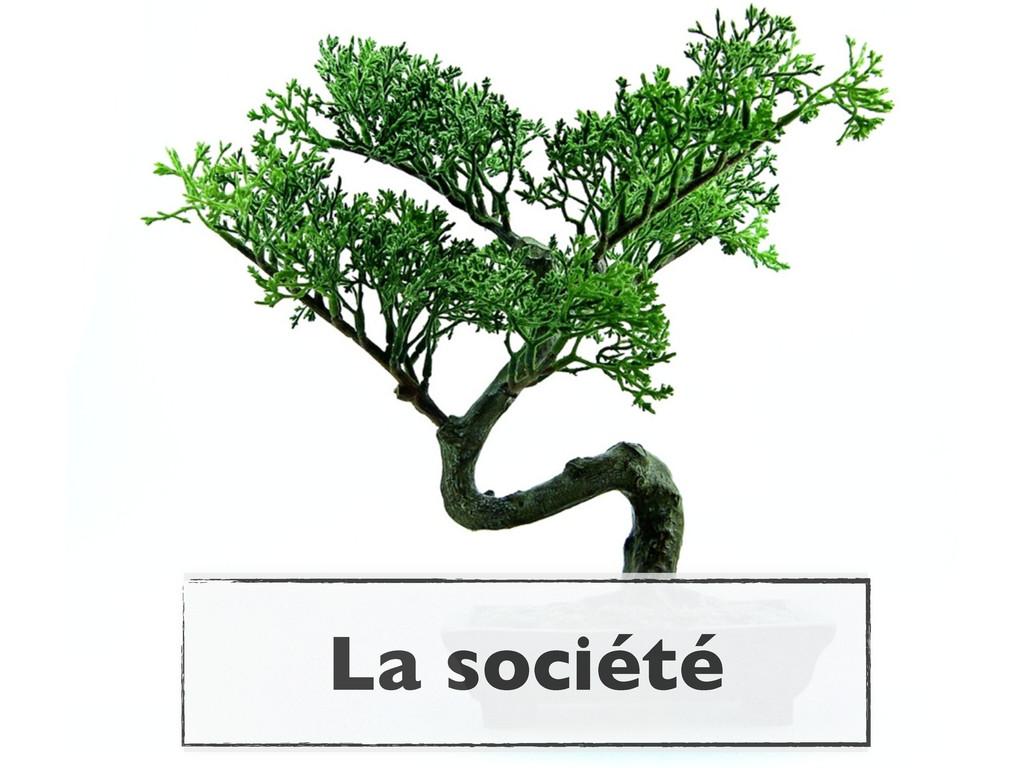 La société