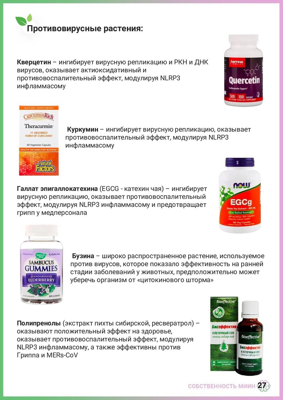27 Противовирусные растения: Кверцетин – ингиби...