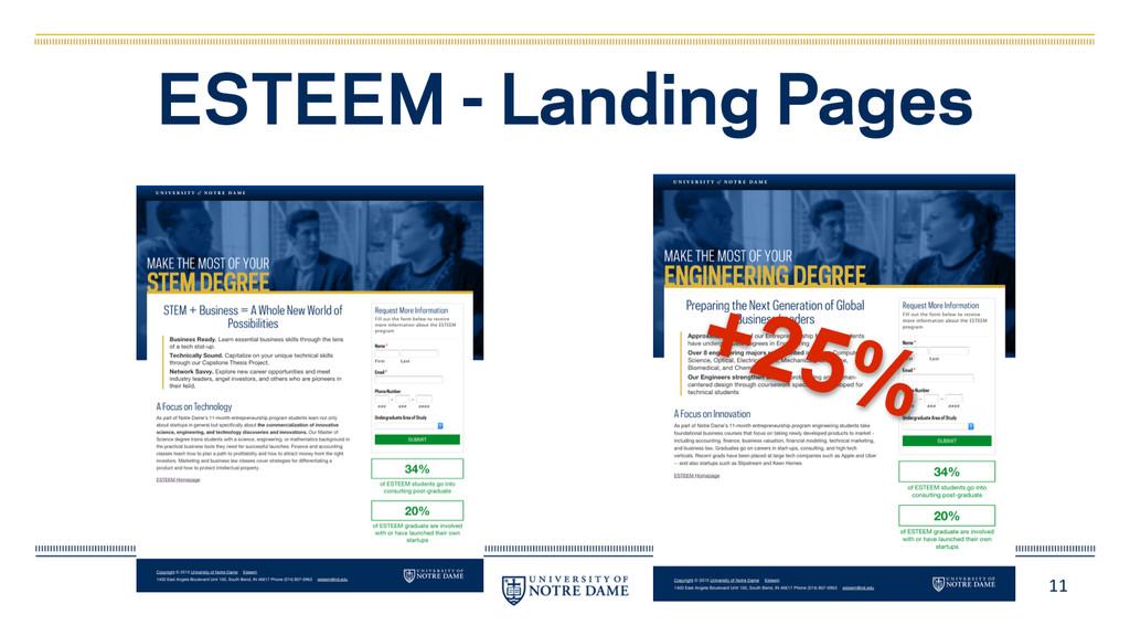 11 ESTEEM - Landing Pages +25%