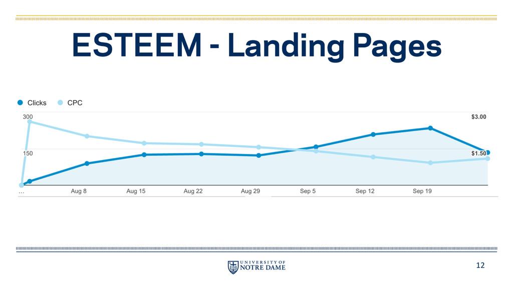 12 ESTEEM - Landing Pages