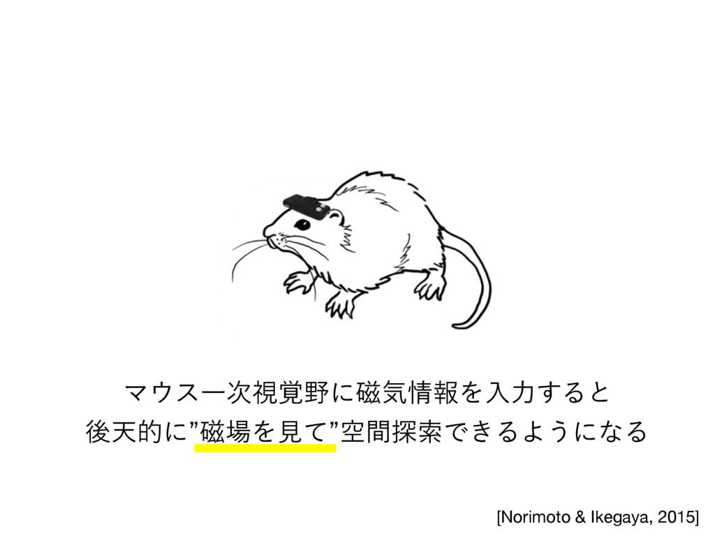 [Norimoto & Ikegaya, 2015] ϚεҰࢹ֮ʹ࣓ؾใΛೖྗ͢Δͱ...