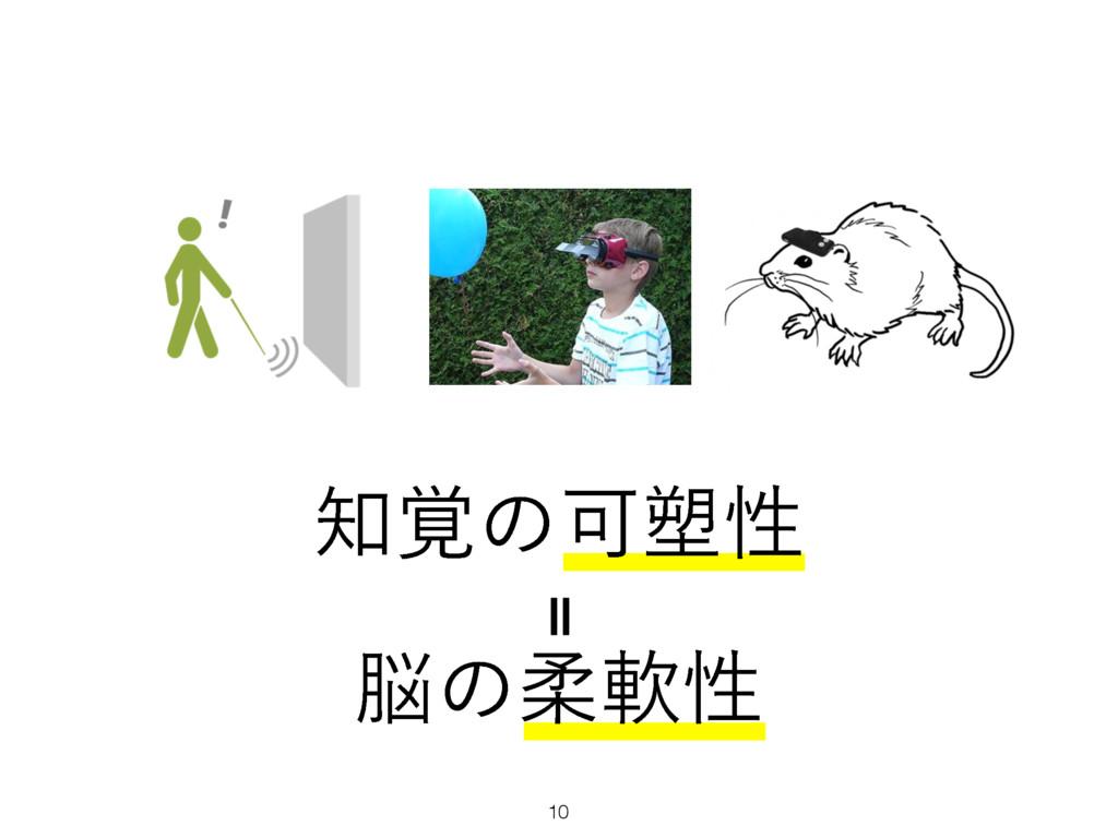 10 ʹ ֮ͷՄ઼ੑ ͷॊೈੑ
