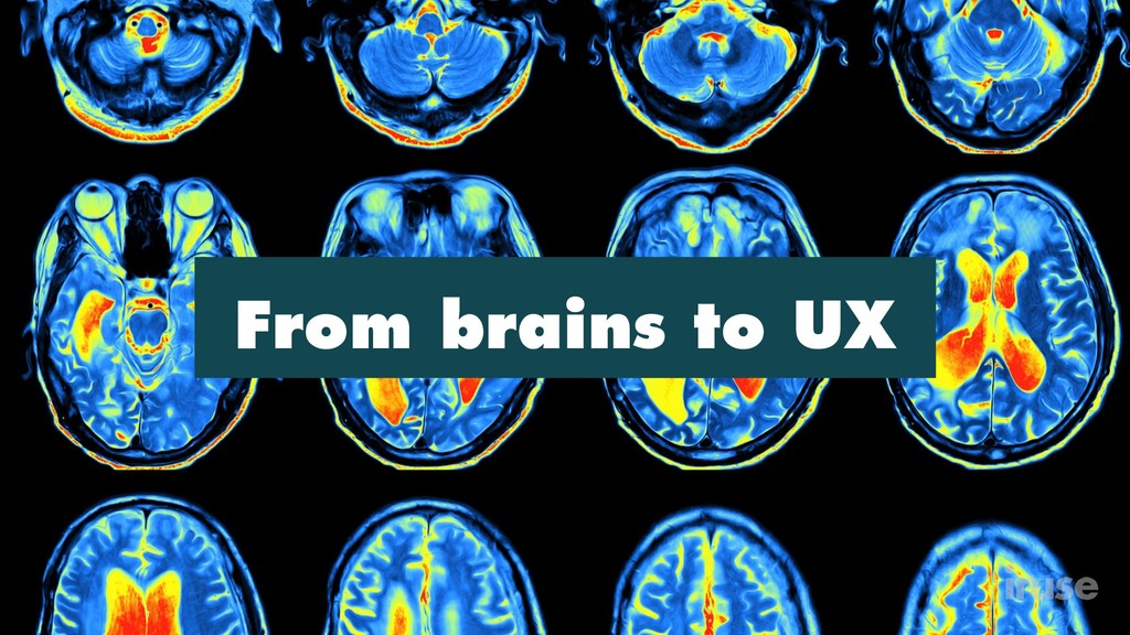From brains to UX