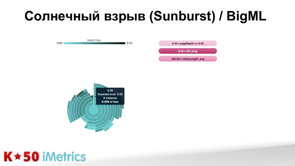 Солнечный взрыв (Sunburst) / BigML