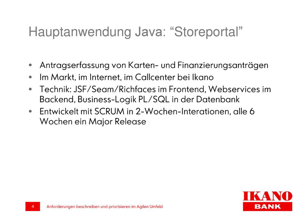 """Hauptanwendung Java: """"Storeportal"""""""