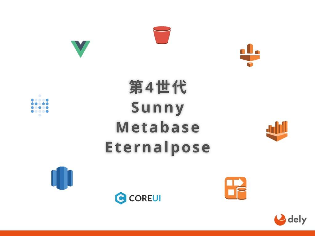 第4世代 Sunny Metabase Eternalpose