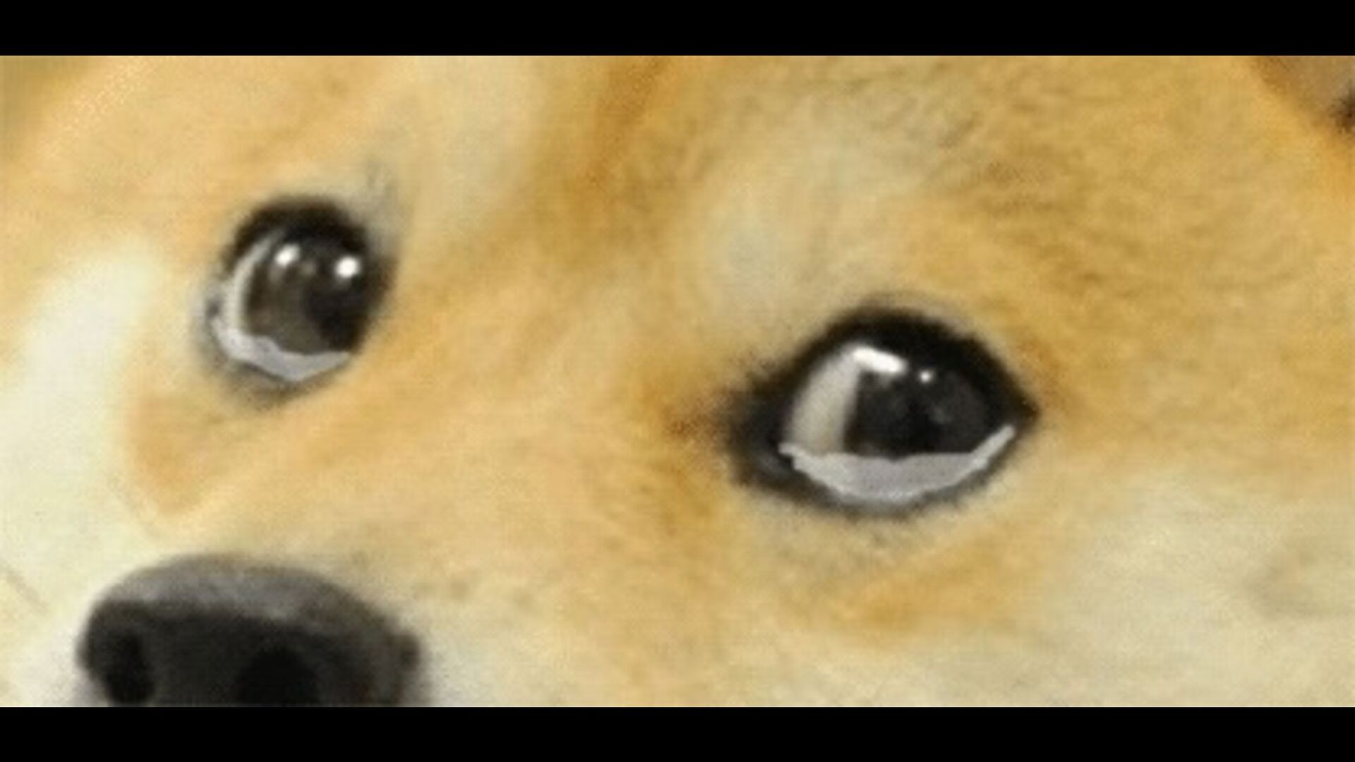 <<Entity>> Contract sign() vote() ✘