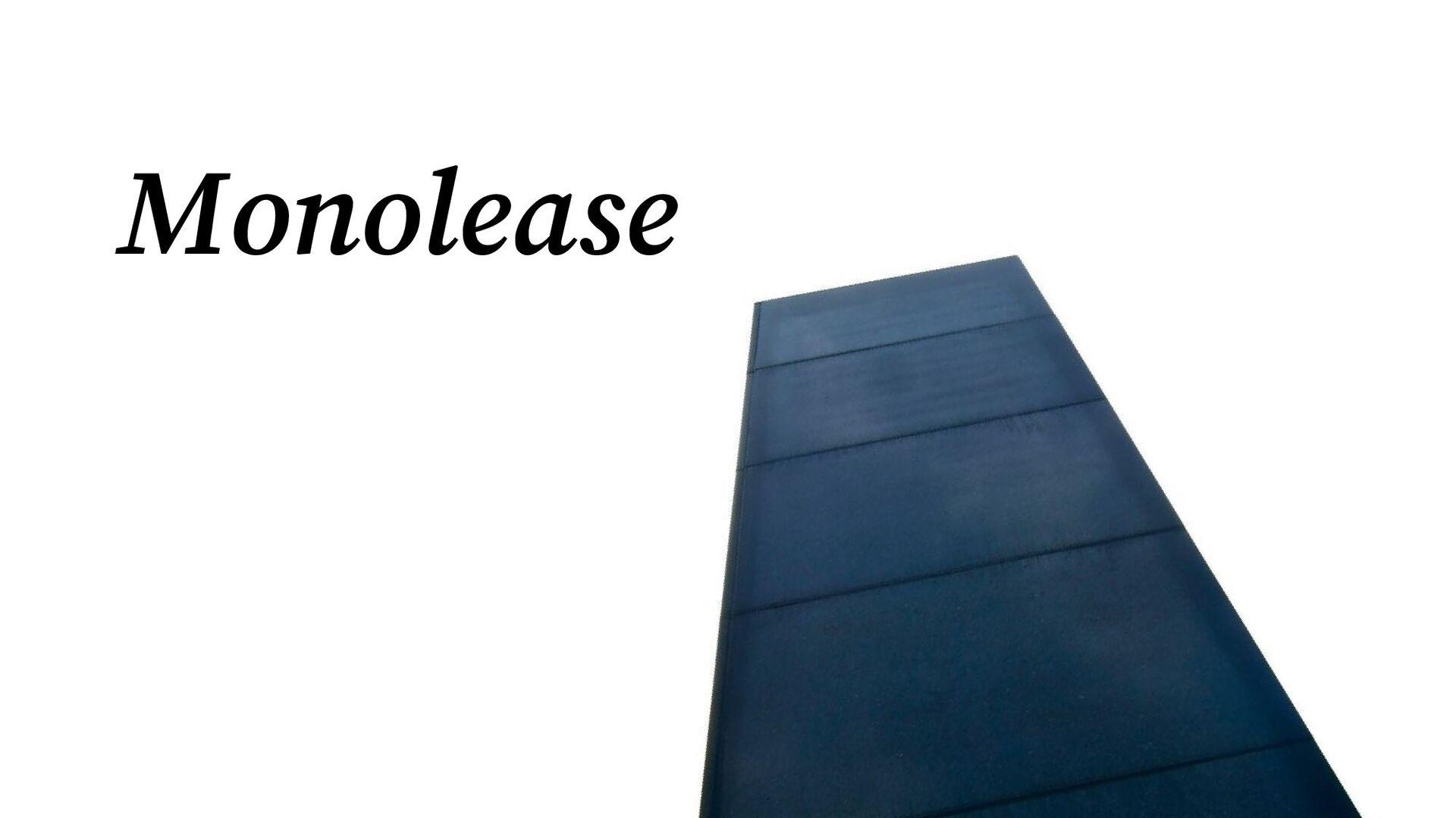 Domain Expert Developer