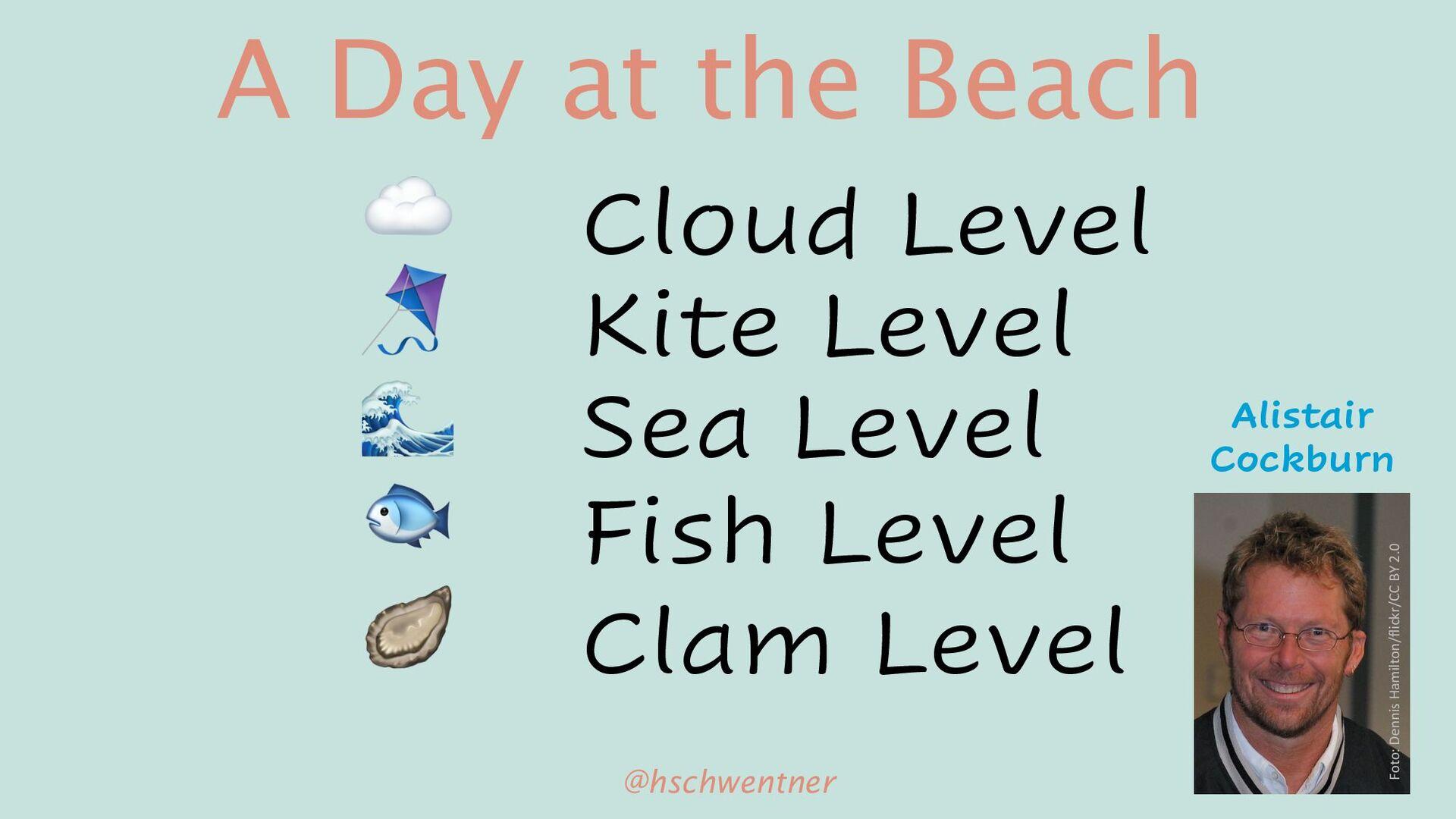 So#ware Domain