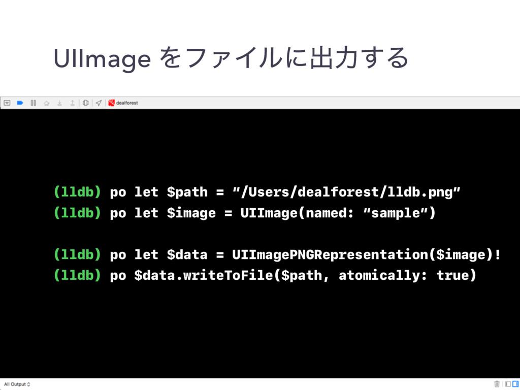 "UIImage ΛϑΝΠϧʹग़ྗ͢Δ (lldb) po let $path = ""/User..."