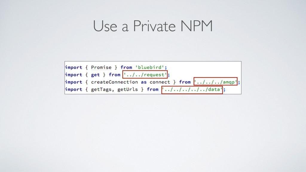 Use a Private NPM
