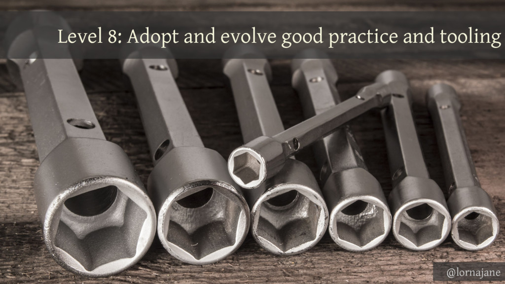 Level 8: Adopt and evolve good practice and too...