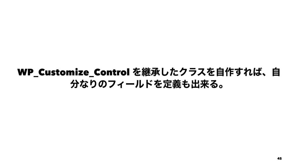 WP_Customize_Control Λܧঝͨ͠ΫϥεΛࣗ࡞͢Εɺࣗ ͳΓͷϑΟʔϧυ...