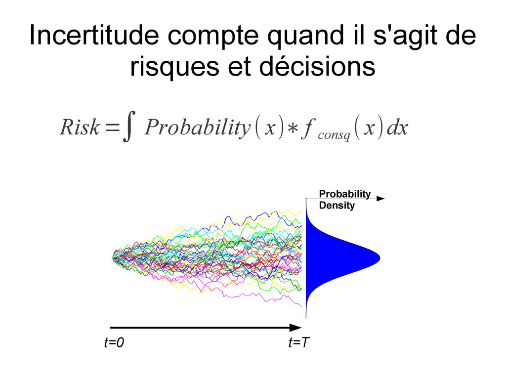 t=0 t=T Probability Density Risk =∫ Probability...