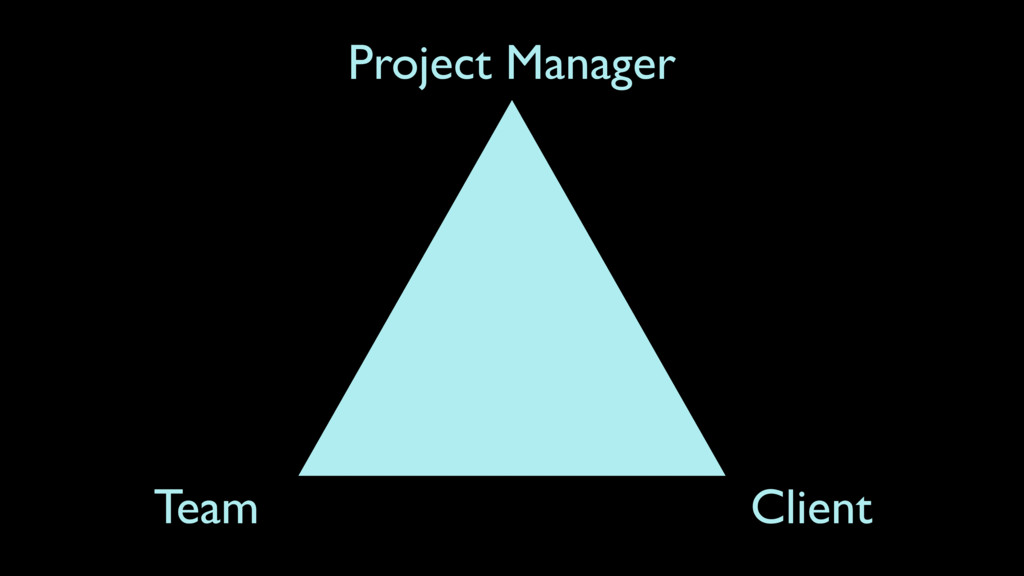 Project Manager Client Team
