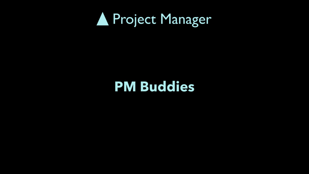 PM Buddies Project Manager
