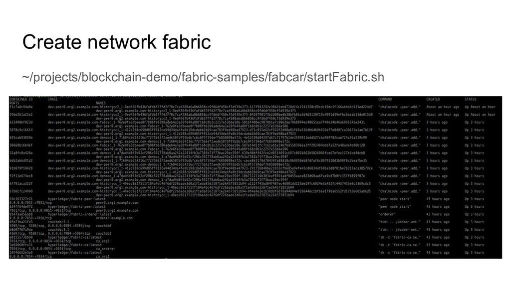Create network fabric ~/projects/blockchain-dem...