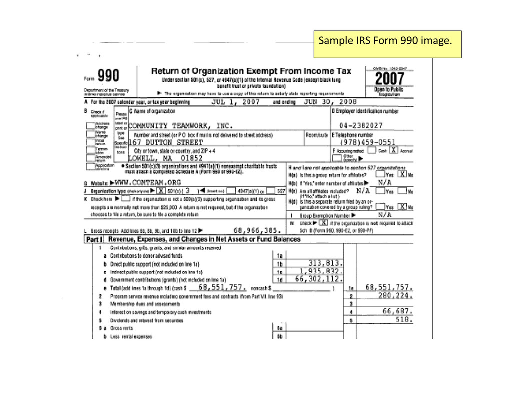 Sample IRS Form 990 image.
