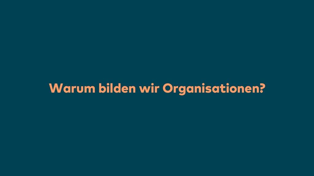 Warum bilden wir Organisationen?