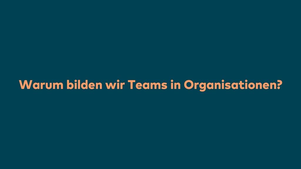 Warum bilden wir Teams in Organisationen?