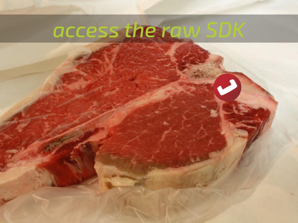 access the raw SDK