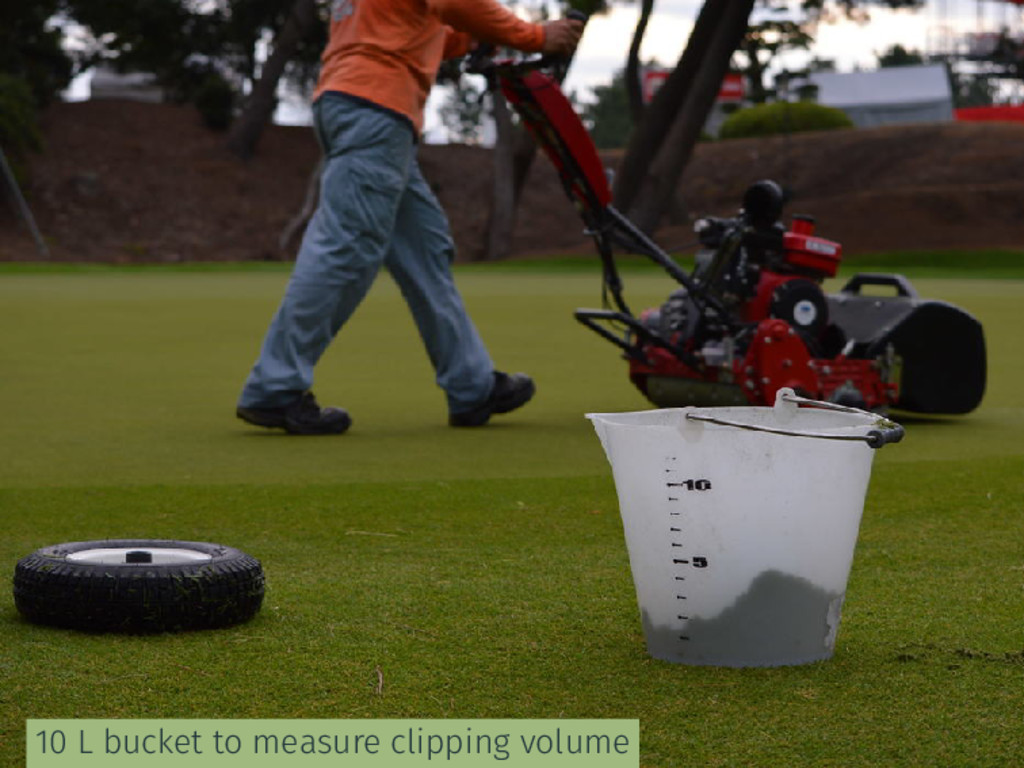 10 L bucket to measure clipping volume