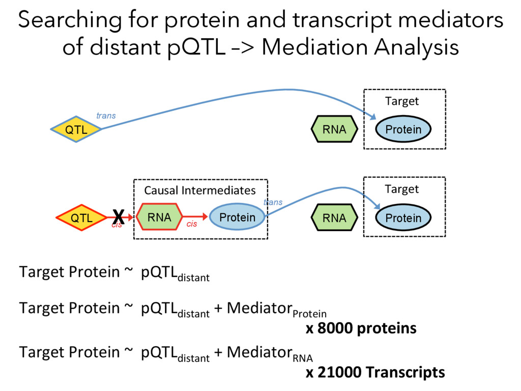 Searching for protein and transcript mediators ...