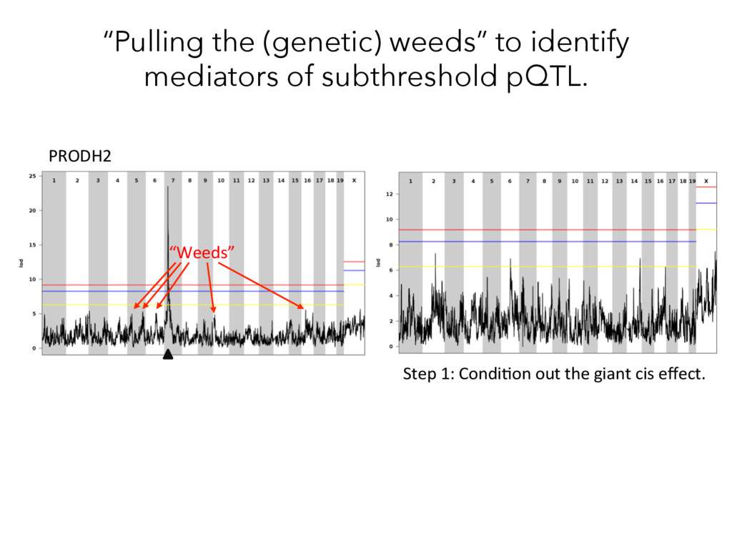 """""""Pulling the (genetic) weeds"""" to identify media..."""