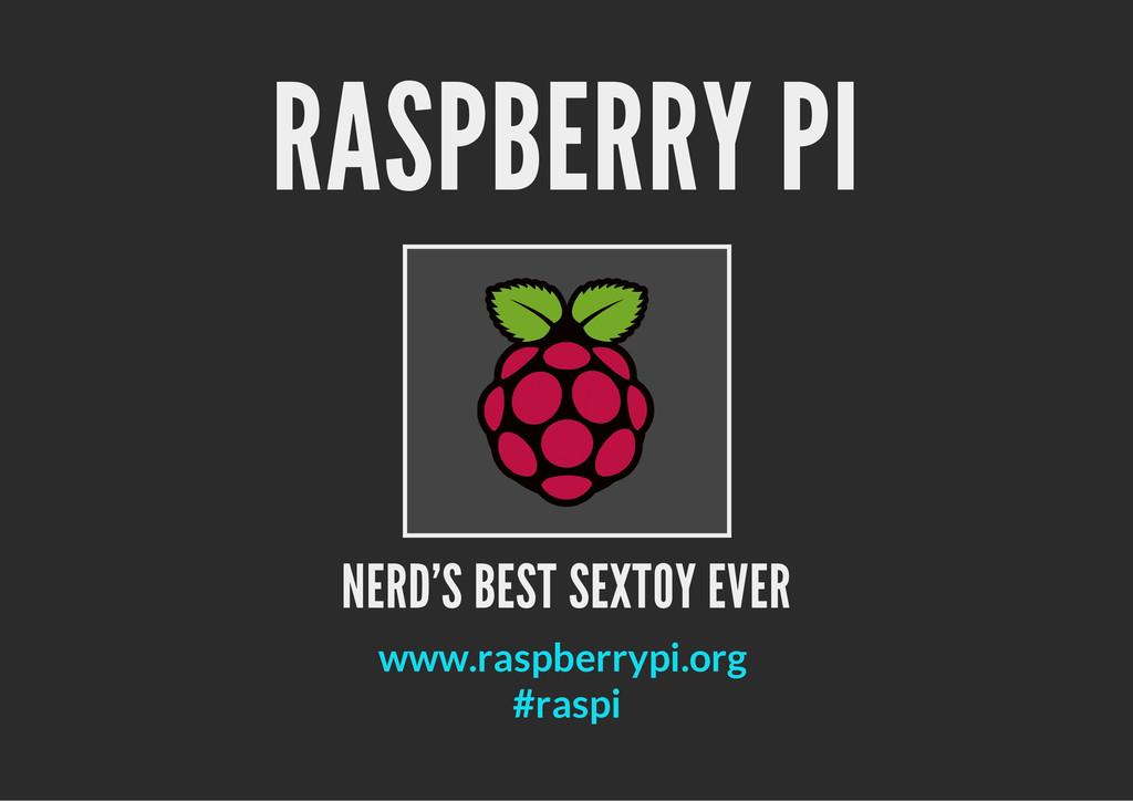 RASPBERRY PI NERD'S BEST SEXTOY EVER www.raspbe...