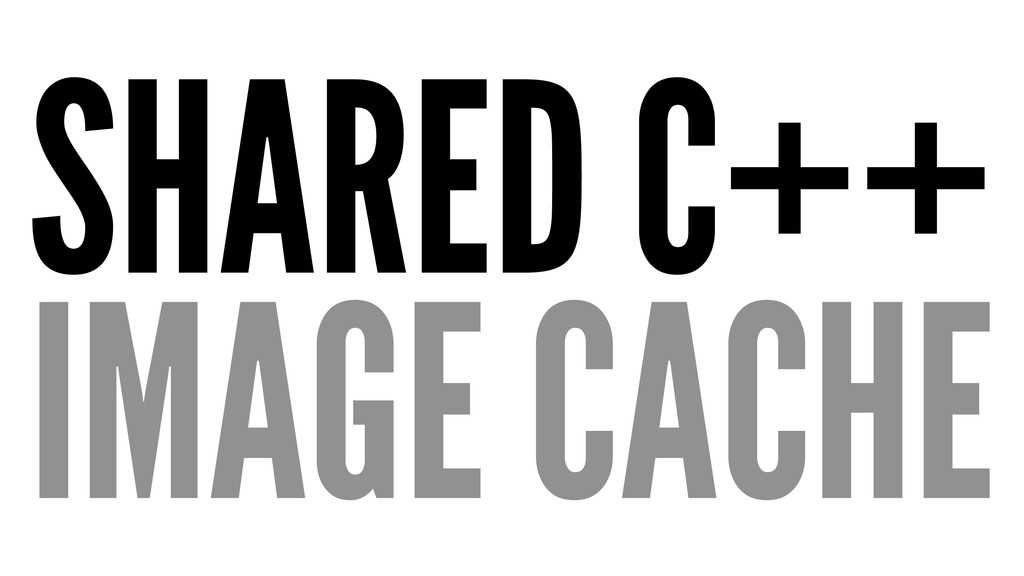 SHARED C++ IMAGE CACHE