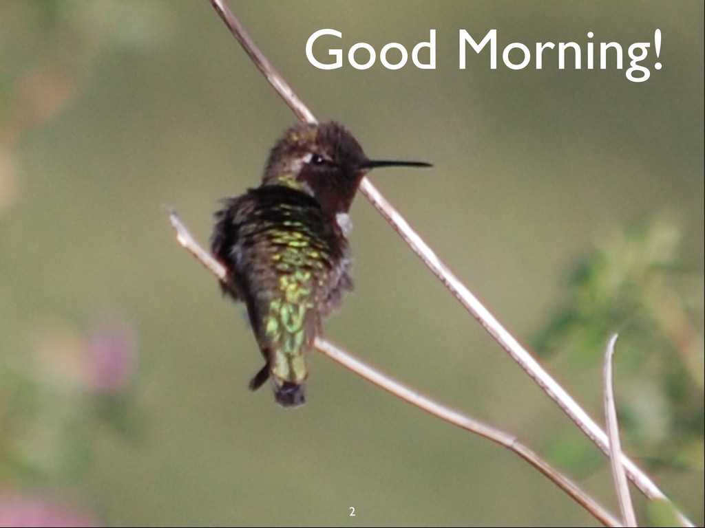 CSTA - July 16, 2013 Good Morning! 2