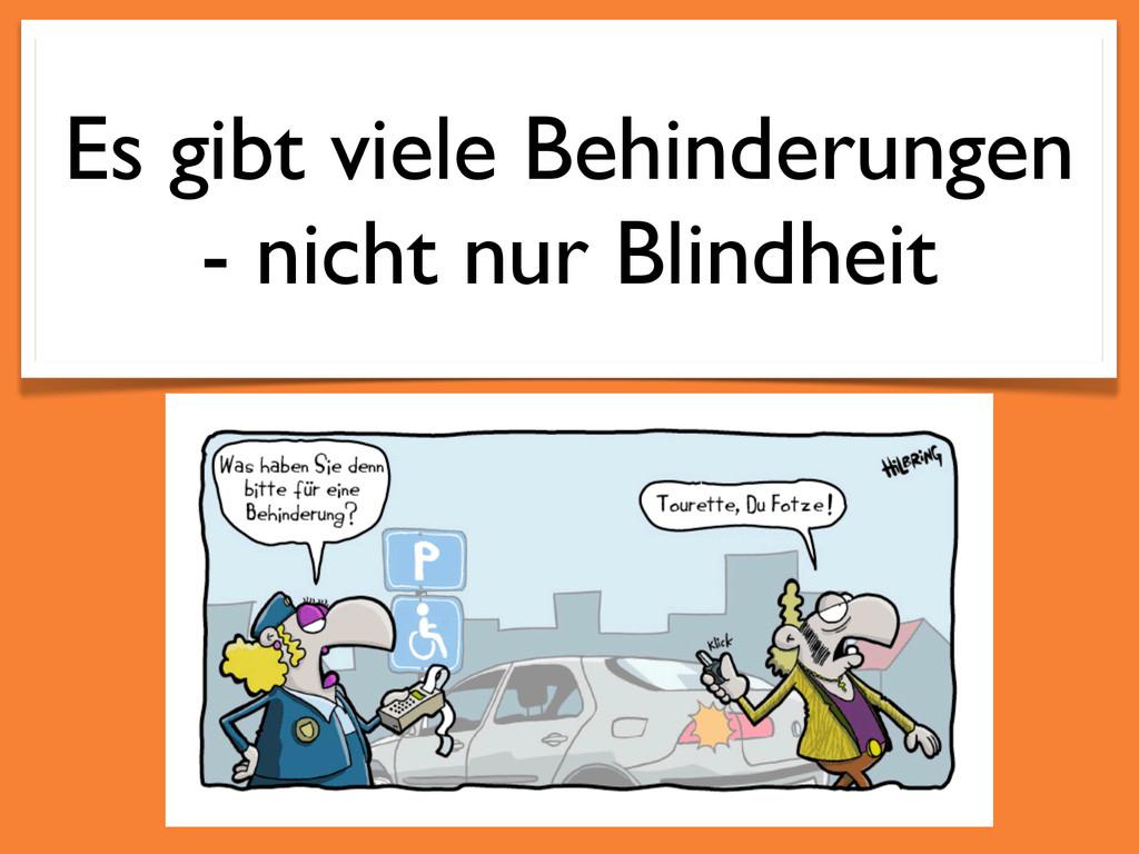 Es gibt viele Behinderungen - nicht nur Blindhe...