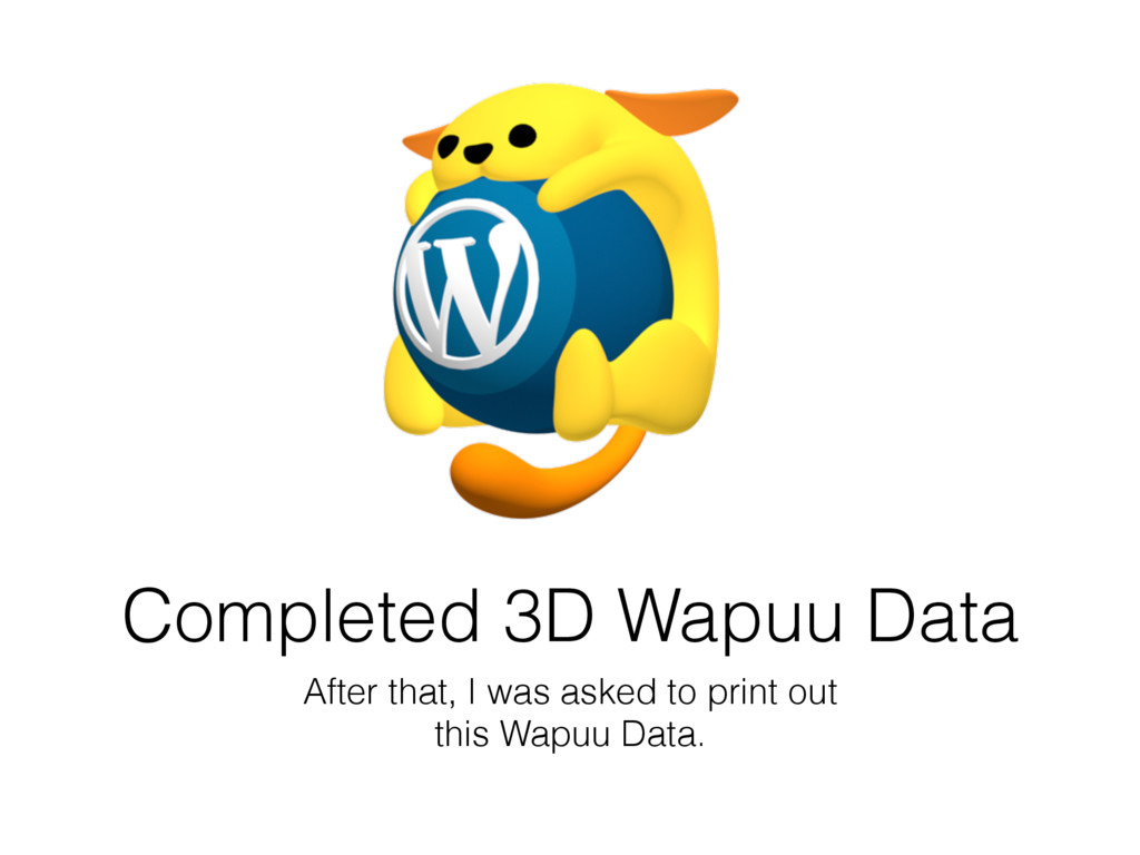 Completed 3D Wapuu Data After that, I was asked...
