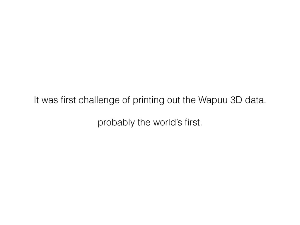 It was first challenge of printing out the Wapuu...