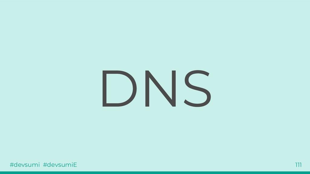 #devsumi #devsumiE 111 DNS