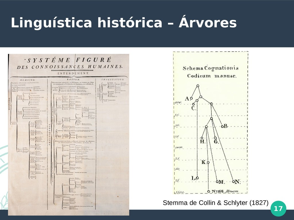17 Linguística histórica – Árvores Stemma de Co...