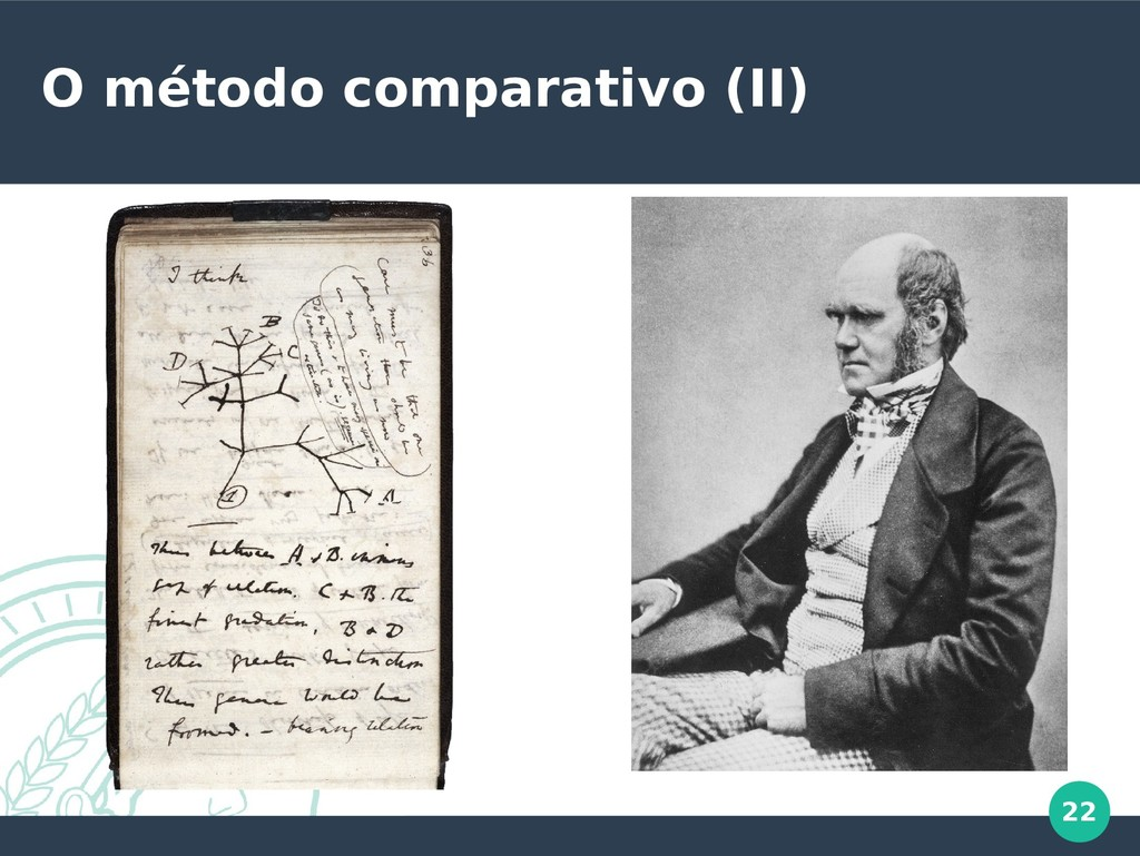 22 O método comparativo (II)